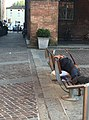 Obdachloser Musiker in Fidenza.jpg