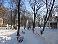 Odessa city garden - winter.jpg