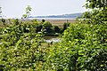 Old Park wood lake - geograph.org.uk - 1395038.jpg