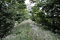 Old remains of a railway line - geograph.org.uk - 880273.jpg