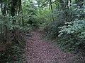Old road near Burningfold Manor Stud - geograph.org.uk - 251281.jpg