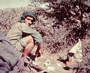 Omani Civil War (1963–76) - Government soldier in 1970
