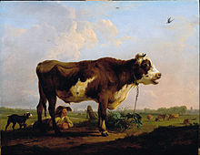 Ommeganck, Balthazar Paul - A Bull - Google Art Project.jpg