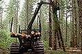 Oregon BLM Forestry 06 (6871712301).jpg