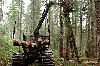 Wood economy - Logging in Oregon