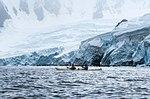 Orne Harbor, Antarctica (24847118101).jpg