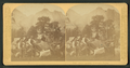 Our Company, Yosemite Valley, by Littleton View Co. 2.png