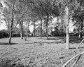 Overzicht boerderij vanaf de schapenweide - Ellewoutsdijk - 20001490 - RCE.jpg