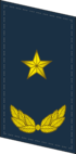 PLAAF-Collar-0718-MG.png