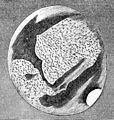 PSM V04 D200 Polar cap of mars.jpg