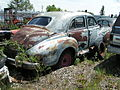 Packard (616973958).jpg