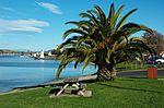 Palm-Devonport-20070522-003.jpg