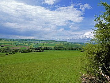 Panorama Bliestal bei Bliesdalheim 2.jpg