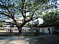Pantabangan,NuevaEcijajf0319 11.JPG