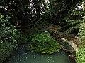 Parco Reale - panoramio (11).jpg