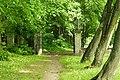Park Przymorze.JPG