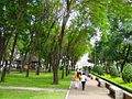 Park of Ho Chi Minh City -Oct-20-2011 - panoramio.jpg