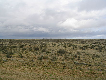 Cold Patagonian steppe near Fitz Roy, Argentina Patagonian plains argentina.jpg