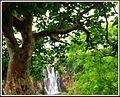 Patal Pani Waterfall.jpg