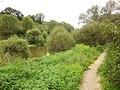 Path by the Sauer - geo.hlipp.de - 41524.jpg