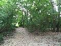 Path from Nisbet Park to Little Miami River, Loveland, Ohio, September 2015.jpg