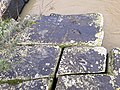 Pedras no Rio Itajaí mirim.jpg