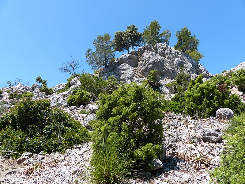 File:Penyal d'Honor - panoramio.jpg