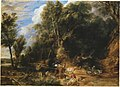 Peter Paul Rubens - Boslandschap met drinkplaats - NG4815 - National Gallery.jpg