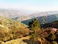 Phagwari Kashmir.jpg
