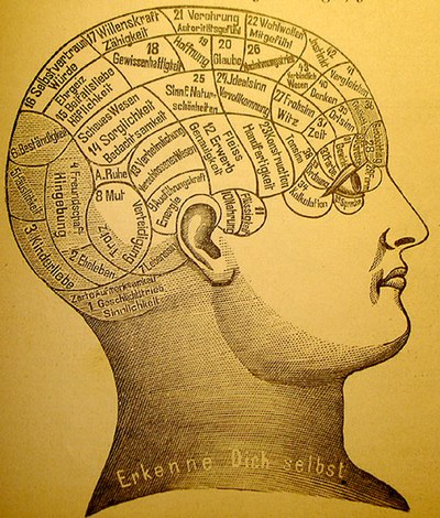 A phrenological mapping of the brain - phrenology was among the first attempts to correlate mental functions with specific parts of the brain although it is now largely discredited. Phrenology1.jpg