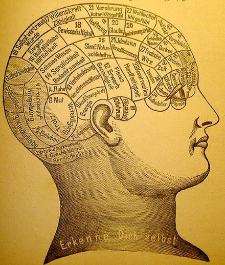 A phrenological mapping of the brain - phrenology was among the first attempts to correlate mental functions with specific parts of the brain Phrenology1.jpg