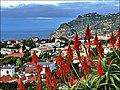 Pico dos Barcelos, Funchal - 2010-12-02 - 96546612.jpg