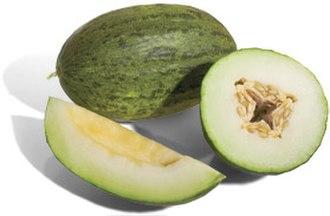 Ovary (botany) - Image: Piel De Sapo Melon