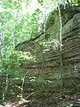 Piney Creek South Site.jpg