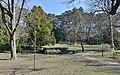Pond, Maxingpark.jpg