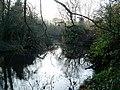 Pond in Bois Meadow - geograph.org.uk - 1068477.jpg