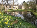 Pond near Saulflands - geograph.org.uk - 377095.jpg