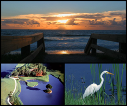 Counterclockwise from top: Ponte Vedra Beach, TPC at Sawgrass, an egret on Bird Island