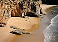 Portugal Sea Lords - Thunderball Earth Photography - panoramio.jpg