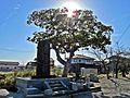 Precincts of Kawaguchi-jinja shrine 2.JPG