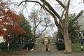 Princeton (8270066453).jpg