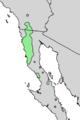Prunus fremontii range map 4.png