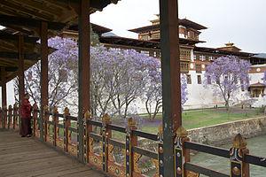 Dzongpen - Punakha Dzong, administrative fortress of the Punabs