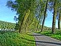 Radweg bei Brügge, Polderstraat - panoramio.jpg