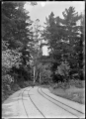 Railway track in the Mount Stuart locality on the branch line to Roxburgh ATLIB 292399.png