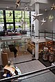 Reception area from above, Otago Museum, 2016-01-29.jpg