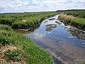 Rezerwat Rabinówka Rzeka - panoramio.jpg