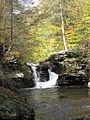 Ricketts Glen State Park Murray Reynolds Falls 7.jpg