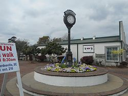 The Ridgeland Street Clock