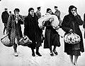 Rifugiati - Alluvione del Polesine (1951).jpg
